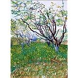 Póster 50 x 70 cm: Orchard in Bloom de Vincent van Gogh - impresión artística de alta calidad, nuevo póster artístico