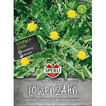 Löwenzahn SPERLING`s Lyonell