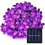 LE Cadena de luces LED solar 4300003-PU – 7m (con cable) 50 LED flores luz violeta, uso exterior, resistente al agua IP55, con panel solar y sensor de luz