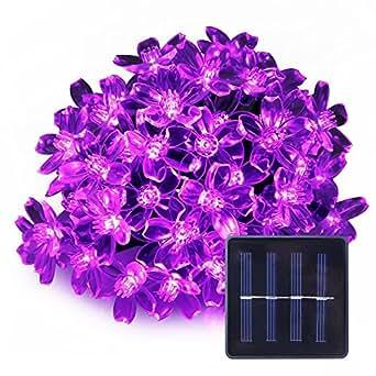 LE corda luminosa a LED, Impermeabile 5m 50 LEDs 1.2 V viola, pannello Solare