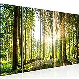 Bilder Wald Landschaft Wandbild 150 x 60 cm Vlies - Leinwand Bild XXL Format Wandbilder Wohnzimmer Wohnung Deko Kunstdrucke Grün 5 Teilig - MADE IN GERMANY - Fertig zum Aufhängen 503856b