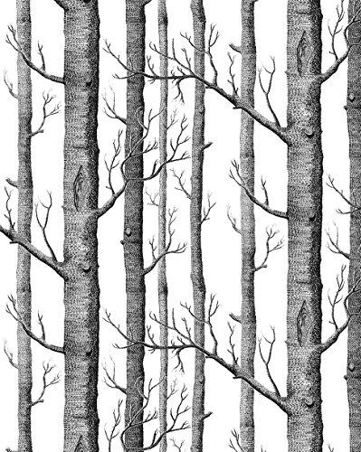 Vlies Wald Stamm Wand Papier Schwarz Weiß Wandbilder Für Küche Badezimmer Wohnzimmer Dekor Vlies Tapete Moderne Wanddeko Design Tapete Wandtapete 3D Wallpaper Fototapete ()