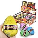 Huevos de dinosaurio Juguete para niños Hatch Crecimiento de agua Dino Dragon para niños Pack de 12 piezas