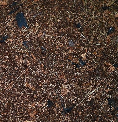 1,5 litre de terreau organique sol pour Cypripedium, Bletilla orchidee plantes, 4 ingrédients - tourbe de coco, copeaux de coco, coques de riz et charbon de coquille de coco. Mélangé à la main, frais sur commande. Livraison gratuite.