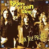 Tygers of Pan Tang: On the Prowl-Best of... (Audio CD)