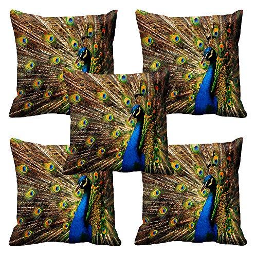 Mesleep Cushion Covers Painted Dancing Peacock (16X16)
