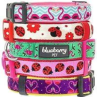 Blueberry Pet Collier Chien, Collection Glamour, Coccinelle et Flamant rose, Laisse et harnais assortis vendus séparément