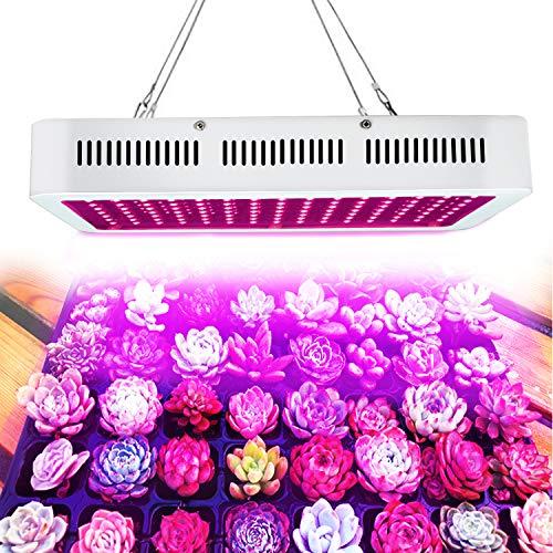 WYZM LED Pflanzenlampe Grow Lampe,1200W HPS-Ersatz,Vollspektrum-Indoor-Wachstumslampe,spezielles Design für Indoor Wachstumsanlagen,100-240V-Eingang (120X10W) (Hps Grow Kit)