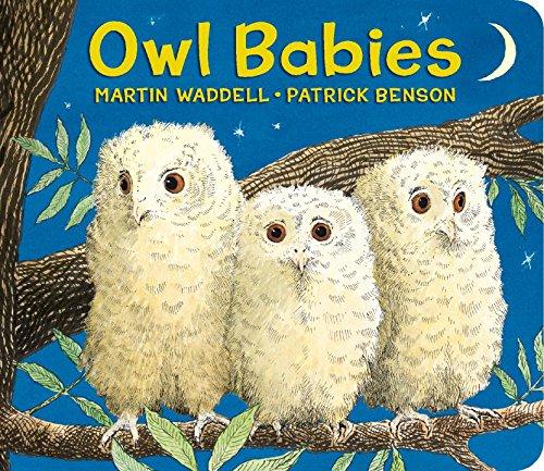 Board Babies Book Owl (Owl Babies)