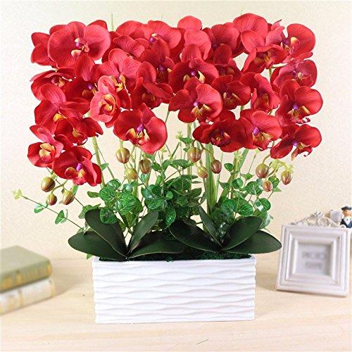 GBHNJ Artificial Flower GBHNJ Faux Fleurs Cadeau Table Basse Gala Simulation Plantes En Pot Decoration Plant Phalaenopsis Rouge Pots À Fleurs Rectangulaire