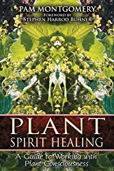 Plant Spirit Healing: A Guide to Working with Plant Consciousness