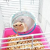 Hamster Silent Exercise Wheel Jogging Running Toy For Pet Rat Gerbils Mice Chinchilla Guinea Pig Squirrel And Other Small Animal Cage-1 Piece Color May Vary