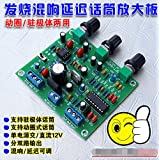 Generic With Reverb Delay Microphone Amplifier Board Module / ETK3699 Digital 12V Board / Electret Dynamic Microphone Amplifier Module