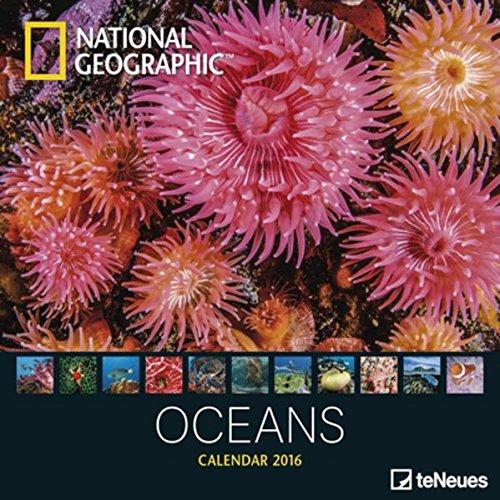 oceans-2016-grid-calendar-national-geographic-photography-calendar-30-x-30-cm