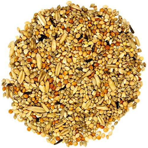 PetNest Bird Feeder Mixed Seed Bird Food- 1000 GMS (1 Kg)