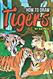 Best Disney Teen Books For Girls - How to Draw Tigers: The Step-by-Step Tiger Drawing Review
