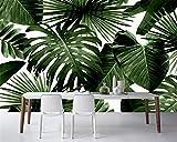 BZDHWWH Moderne Benutzerdefinierte 3D Tapete Tropischen Regenwald Palme Banane Blatt 3D Wohnzimmer Hintergrund Wand Wandbilder Tapete,50cm (H) x 70cm (W)