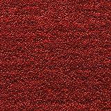 KADIMA DESIGN Moderner Designer Teppich DRAU Rug 240x340cm DR01 Red Rot 100% Polypropylen