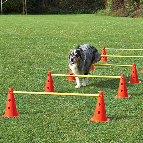 Superhund24 Agility-Hürde, rot/gelb, mit Tragetasche, 5 Hürden für Agility-Training