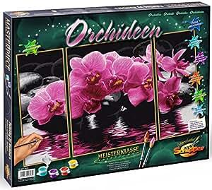 Schipper - 609260603 - Orchids - Triptychon - Tableau à Dessin - Taille 40 x 50 cm
