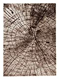 Carpeto Teppich Modern Beige 120 x 170 cm Holzstamm Baum OptikMuster Nantes Kollektion