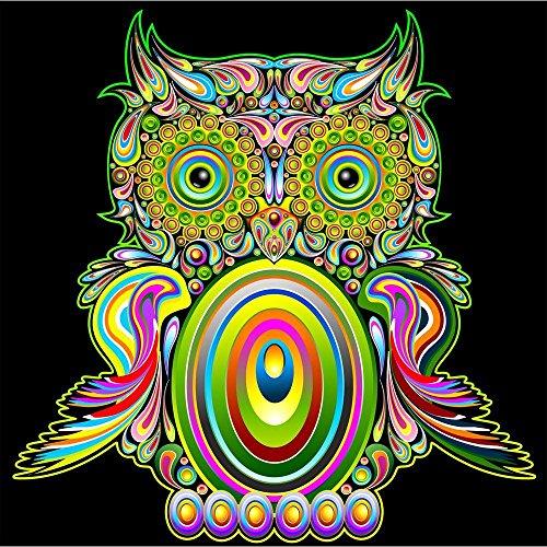 Pitaara Box PB Owl Psychedelic Pop Art Design Peel & Stick Vinyl Wall Sticker 20 x 20inch