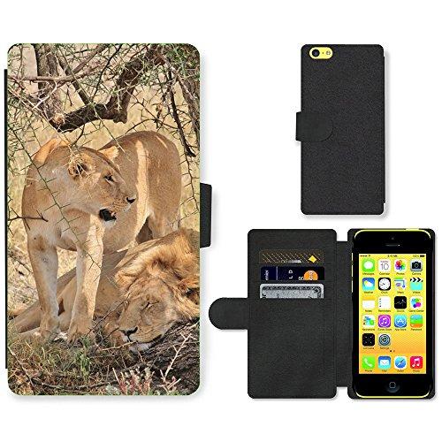 Just Mobile pour Hot Style Téléphone portable étui portefeuille en cuir PU avec fente pour carte//m00139583Animaux Lion Afrique//Apple iPhone 5C