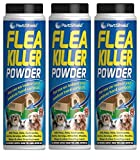 3 x Pestshield Flea Killer Powder Control Fleas Carpet Beetles Earwigs Wasp New.
