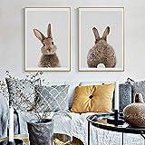 bdrsjdsb Niedlichen Tier Kaninchen Leinwand Poster Kein Rahmen Malerei Kunst Büroraum Cafe Wandbild 2# 30 * 40 cm -
