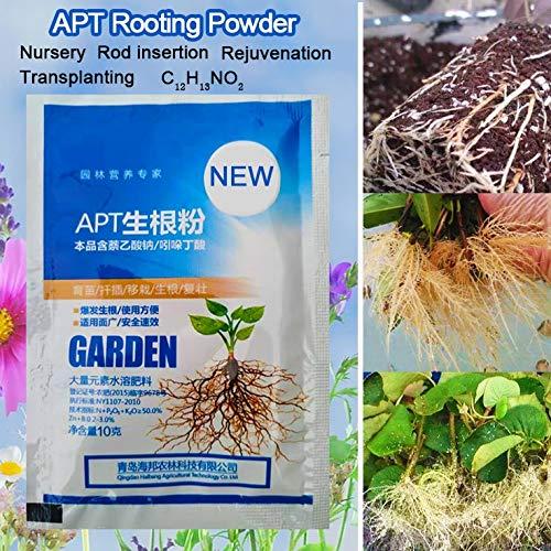Ferry Regolatori IBA Bonsai Plant Growth Hormone Radice Growing Recupero Germinazione Vigor Aid Garden