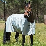 Horseware Amigo Hero 6 Turnout Lite 50g Silver/Black & Black (145)