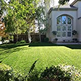 Golden Moon Kunstrasen-Teppich realistischer grün dekorativer Synthetik Kunstrasen Turf Bereich Teppich Florhöhe 25mm Höhe 0.91mx1.52m, Polypropylen, 0.9mx1.5m l 3'x5'