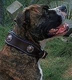 Tysons Breeches  Hundhalsband Leder Wave Sonne Braun breit gewellt weich unterlegt Hundehalsband Braun Gold Farben fest genäht Rindsleder (L)