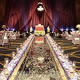 GlobaLink® Hochzeit Lichterkette 3M 400LEDs Weihnachtslichterkette mit 8 Modes Niederspannung 31V für Hochzeit Party Geburtstag Garten Haus Innen/Außen - Rosa&Weiß