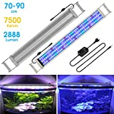 BELLALICHT Éclairage LED pour Aquarium Lampe Rampe 135 LED Aquarium d'eau Douce RGBW ou Bleu Lumieres 22W LED pour 70-90CM Aquarium - 7500K