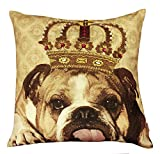 Air Castle- Home Decore- Polyester & Polyester Blend- Royal Dog Cushion Cover best price on Amazon @ Rs. 872