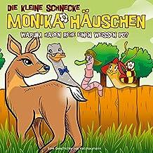 Die kleine Schnecke Monika Häuschen - CD / 50: Warum haben Rehe einen weißen Po?