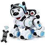 COSTWAY RC Interaktiv Roboter Hund mit Musik-, Tanz-, Blink- und Schießfunktion, Ferngesteuerter Hund Roboter, Roboterhund in