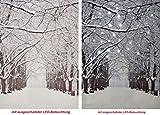 CBK-MS LED Wandbild mit Beleuchtung Verschneite Allee im Winter Leuchtbild 30x40cm