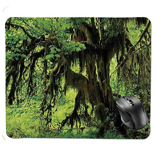 Natural Life-produkten (J5E7JYTE Premium-Textured Mouse pad,Tree with Moss in The Jungle Natural Life Zen Home Decor Silent Plants Pattern Mouse Pad)