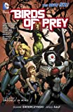Image de Birds of Prey Vol. 1: Trouble in Mind (The New 52)