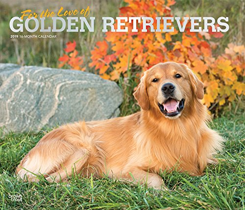Golden Retriever - For the love of 2019 - 18-Monatskalender mit freier DogDays-App: Original BrownTrout-Kalender - Deluxe por Inc. Browntrout Publishers