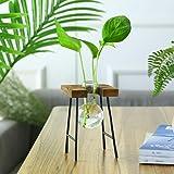 TZUTOGETHER escritorio Florero de vidrio con marco de banco de madera maciza,Florero de bombilla con soporte de madera,Jarron
