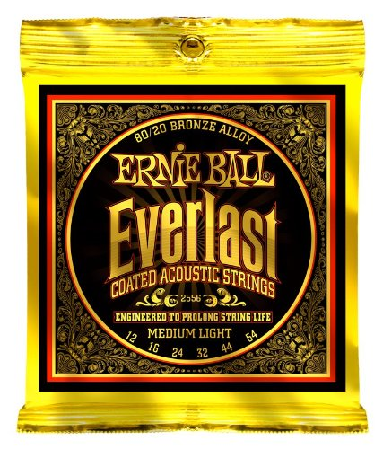 Martin 12 Akustik Gitarre String (ERNIE BALL EP02556 EVERLAST BRONZE 80/20 12-54 MEDIUM LIGHT)