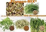 500 g BIO Keimsprossen Mischung -Pfannen MIX- Keimsaat 5 x 100 g Samen für die Sprossenanzucht Mungobohnen, Alfalfa, Erbsen, Linsen, Kichererbsen Sprossen Microgreen Mikrogrün