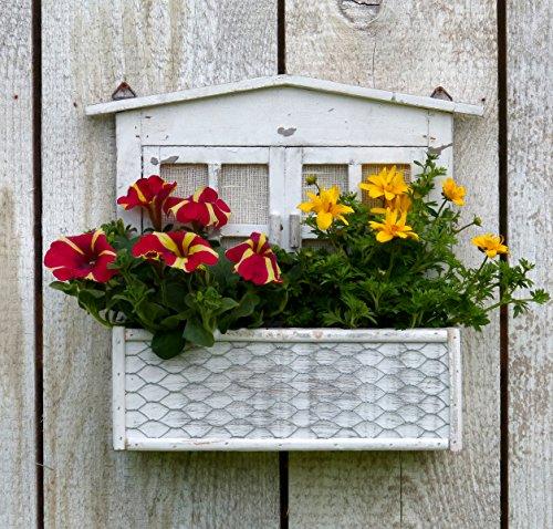 amadeco Wunderschönes Holzfenster zum Bepflanzen - Sprossenfenster - Hinstellen oder Aufhängen - Landhaus