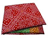 PEEGLI Jahrgang Indische Gedruckt Saree Rot Seide Mischung