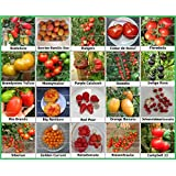 Tomaten Set 2 :: Historische alte Tomatensorten 20 Arten Samen Fleischtomate Cherrytomate Cockteiltomate Tomate Mix Paket Mischung Rarität