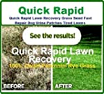 1kg Quick Rapid Lawn Recovery Grass S...