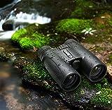 ENKEEO 10X42 Fernglas Kompakt Binoculars für ...Vergleich